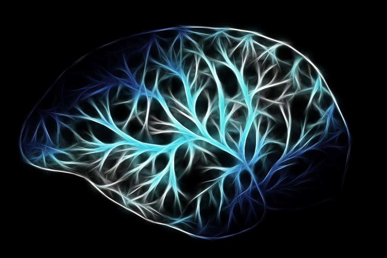cerveau insomnie chronique