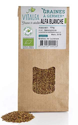 Graines à Germer d'Alfalfa (Luzerne) BIO - 150g - Vitalfa